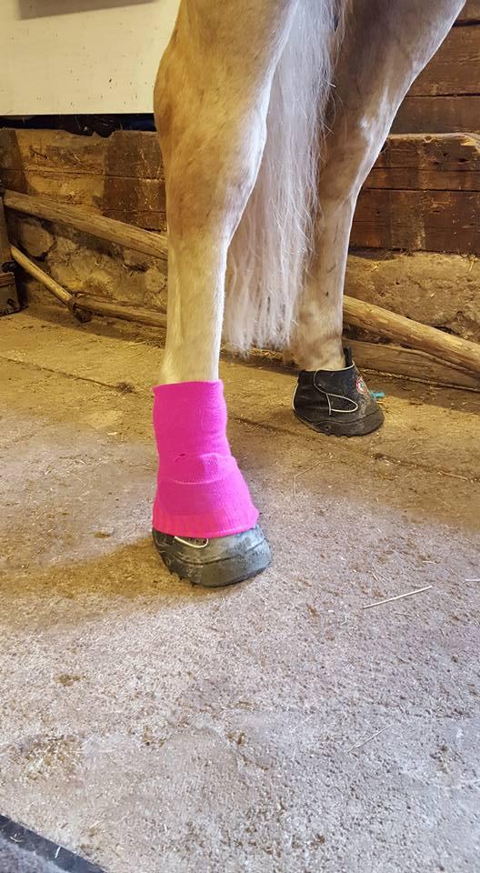 Bästa tipset mot smuts grus stenar och skavsår när hästen använderjoggingskorna!